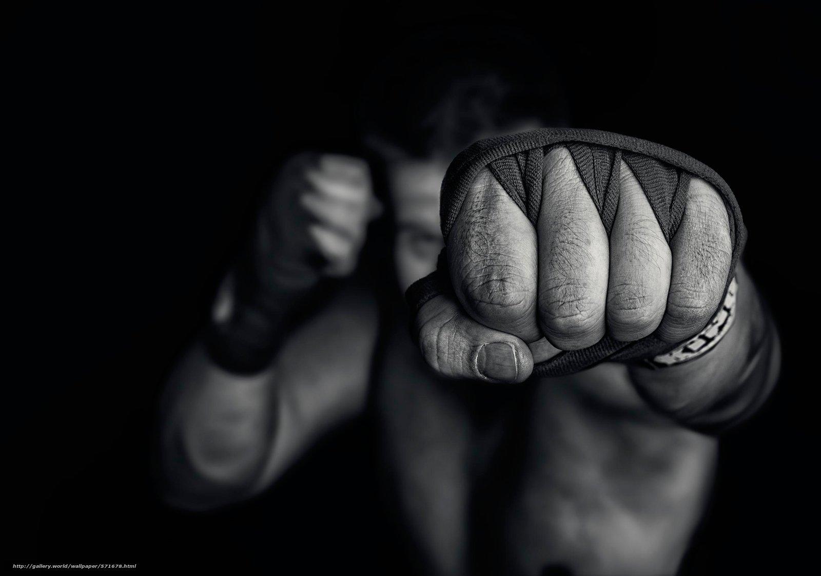 Бой Дениса Беринчика и забег с винишком: лучшие спортивные ивенты Киева 15-21 апреля