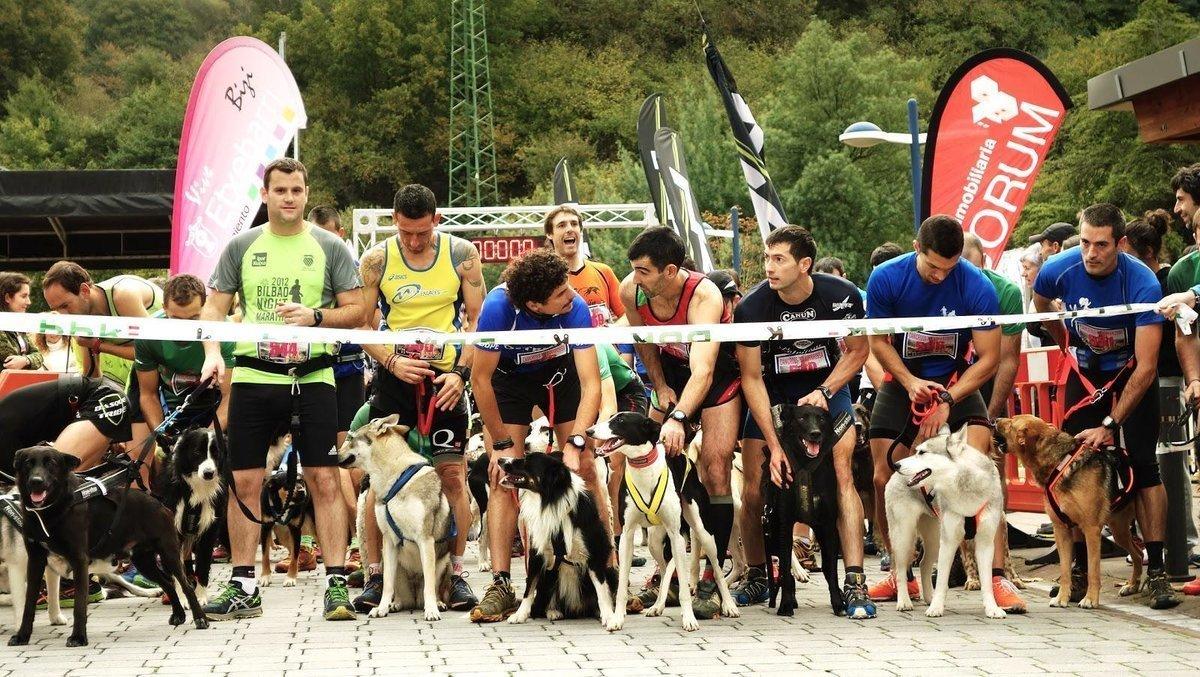 Якими видами спорту можна займатися зі своєю собакою